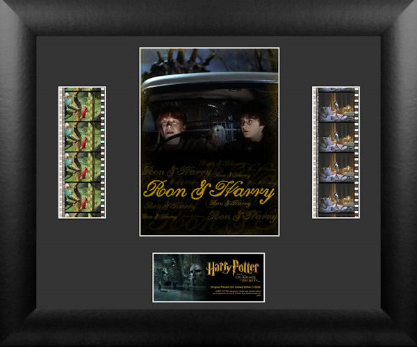 Harry Potter and the Chamber of Secrets� (S4) Double