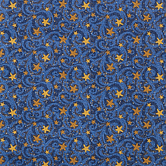 Stargazer Theater Carpet