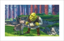 Shrek and Donkey in the Woods